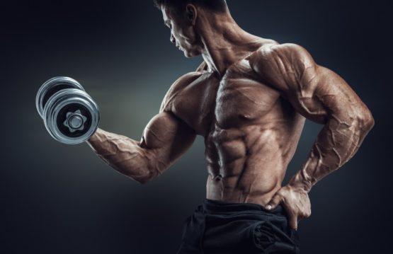 functioneren anabole steroïden