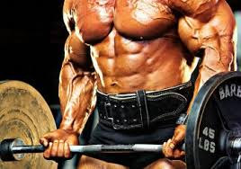 the use of anabolic steroids