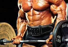 het gebruik van anabole steroïden
